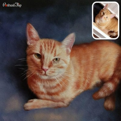 Oil cat portraits from picture