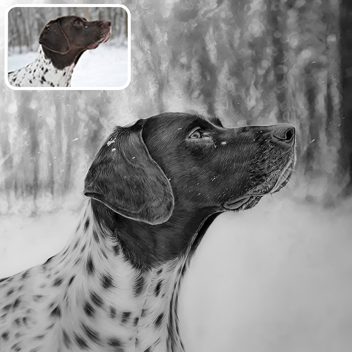 pet charcoal portrait