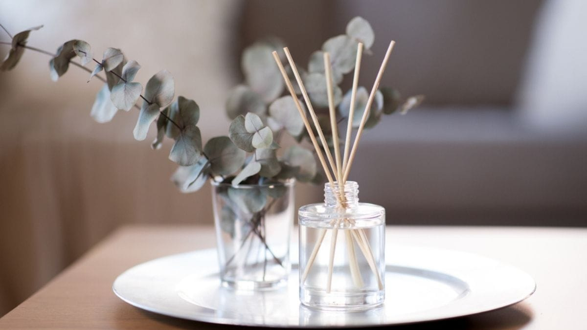 Reed Diffusers PortraitFlip Mother's Day Gifts