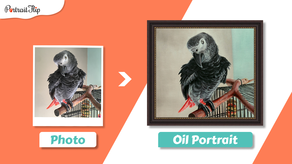 Photo to painting of a grey parrot sitting on a branch.