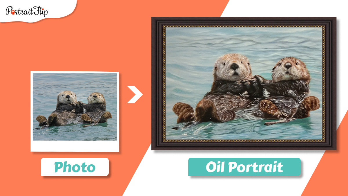 Photo and pet portrait of two beavers holding each other and floating.