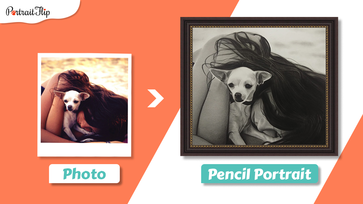 Pet pencil portrait of a woman sleeping with her Chihuahua puppy.