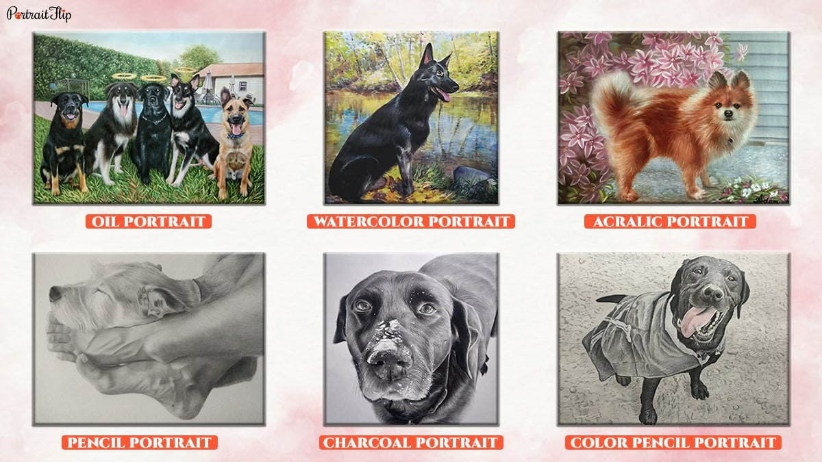 A compilation portrait of various mediums of getting a dog portrait. It includes an oil, watercolour, acrylic, pencil, charcoal, colour pencil portraits of dogs.