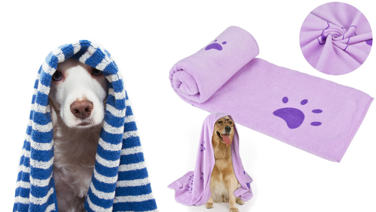 Some high quality fiber bath towels have covered dogs' head.