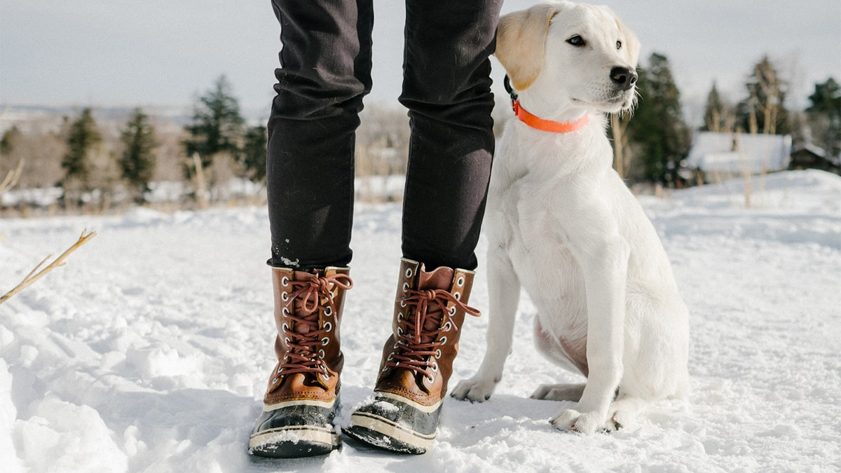 a girl wearing winter boots beside a cute dog in snow