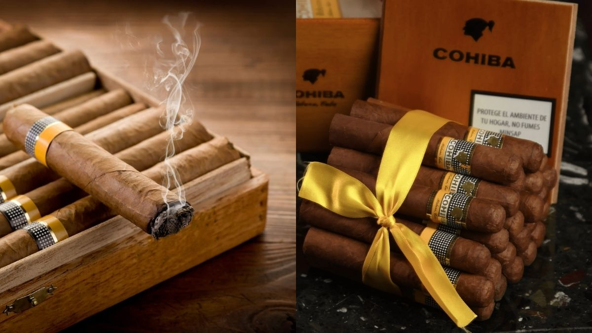 A lit cigar kept box full on cigars on the left. a heap of Cohiba cigars are tied together with a Yellow ribbon and kept in front of the cigar box.