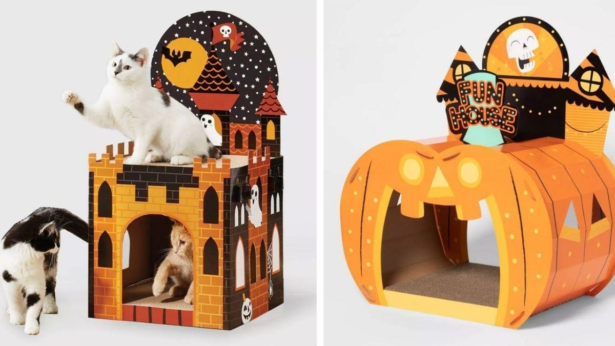 three cats playing in a Halloween themed cat house made of cardboard. on the right hand side a cardboard cat house in pumpkin shape.
