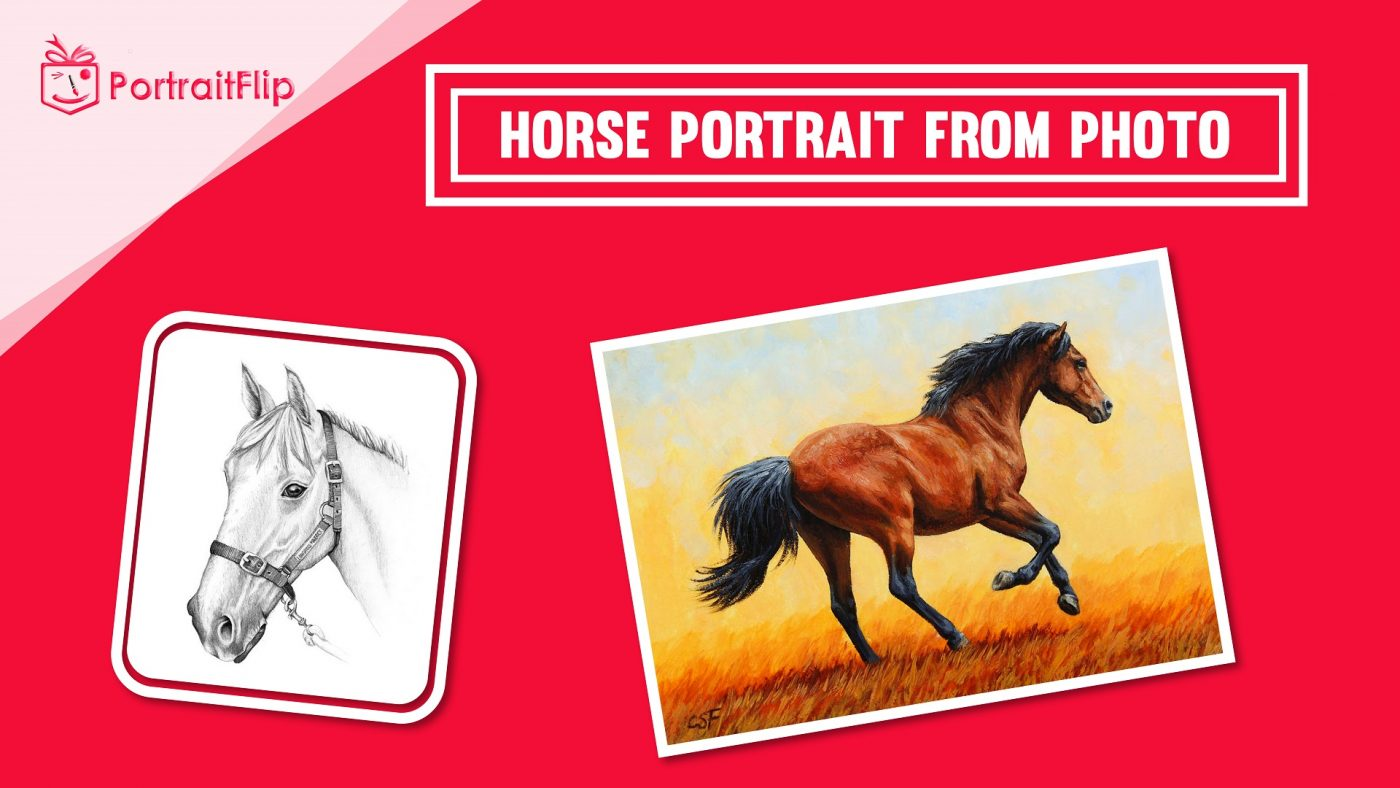 Horse from photo